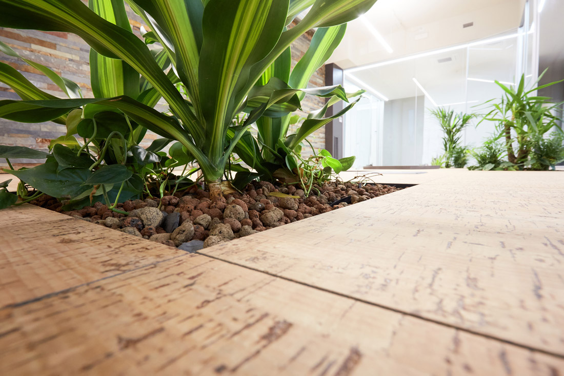 Floora modulo piante idrocoltura per pavimenti sopraelevati